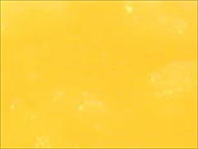 桜 夏みかん P008