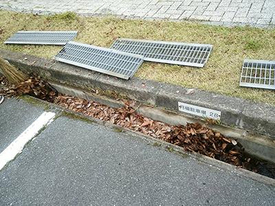 側溝の落ち葉