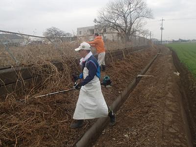 草刈り機で清掃