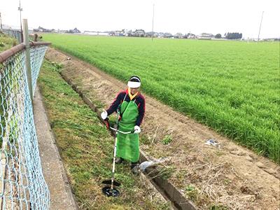 草刈り機を使用しているところ